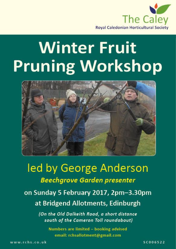 pruningworkshop